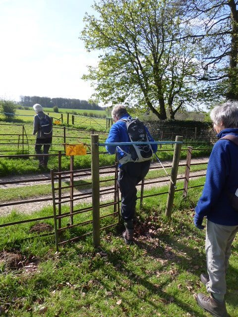 Through an obstacle course of squeeze stiles and electric fences