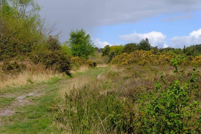 Onto the heathland at Muttersmoor