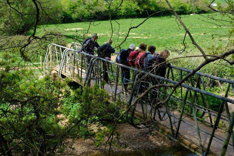 Before descending to the river at Clamour Bridge where beaver have been seen