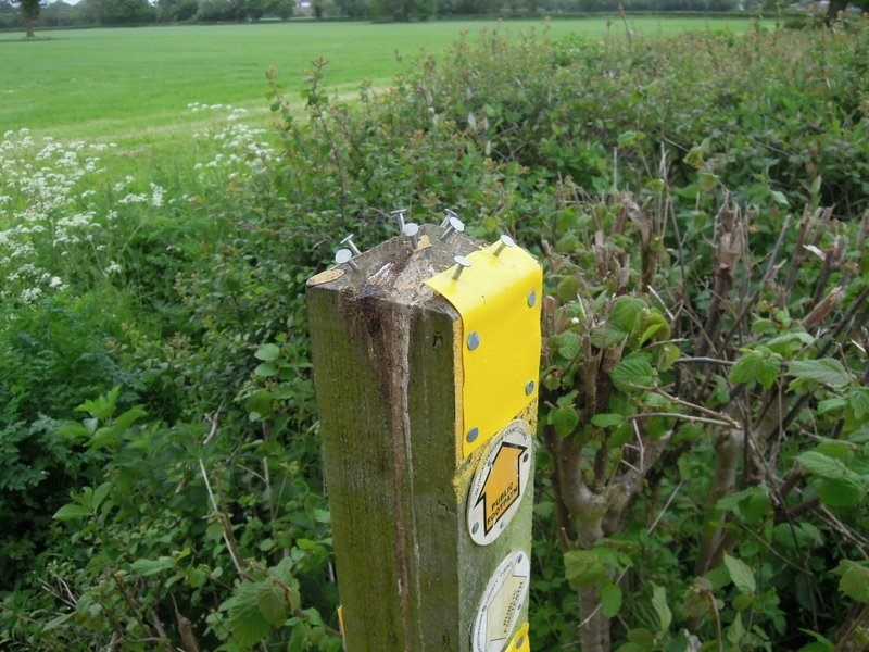 The farmer has marked the route clearly - a few surplus tacks - is this a piece of art?