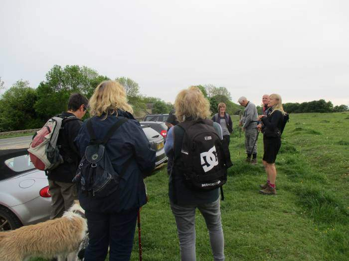 Janet's first solo lead - but she has some friends come for moral support (and one brings dogs)