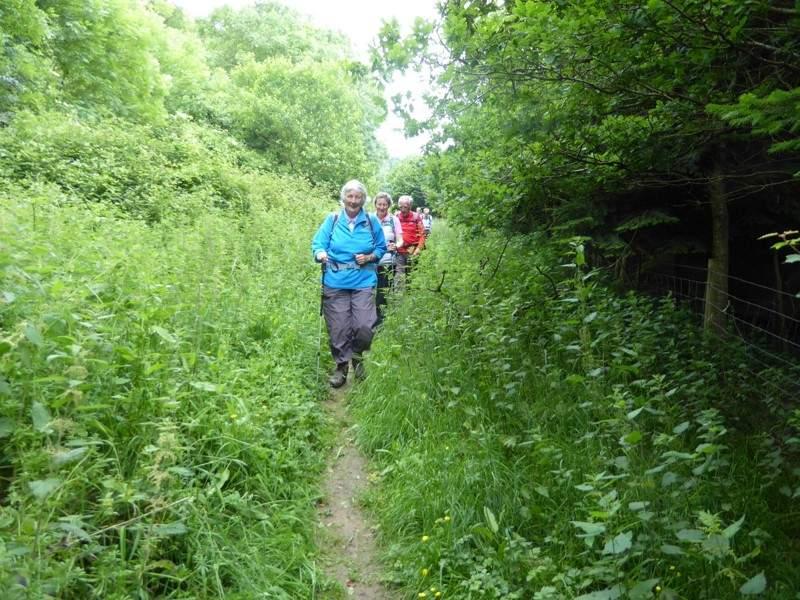 Heading down towards Prestbury