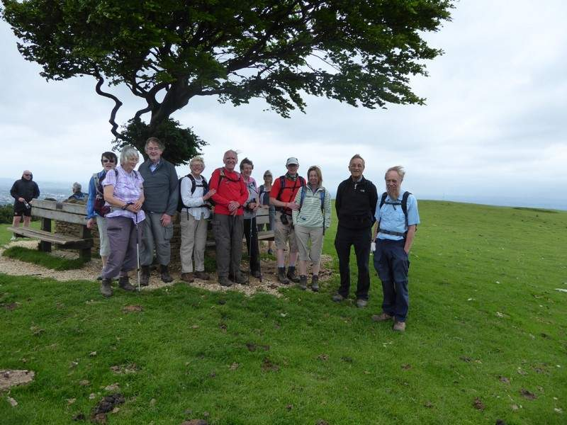 A very windswept group photo by the iconic windswept tree