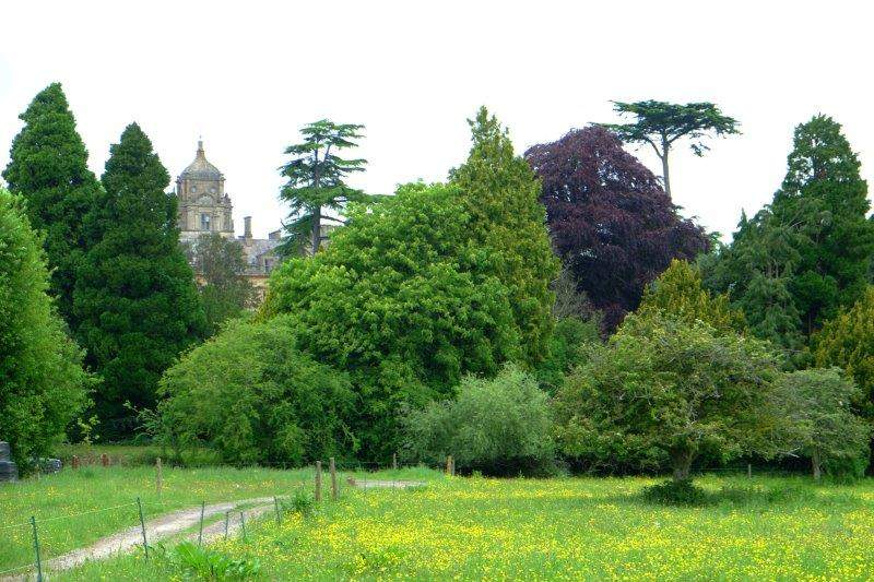 With Westonbirt School looking at us over the tops of the trees