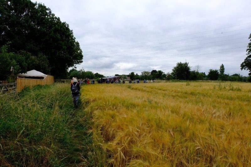 Continuing around fields