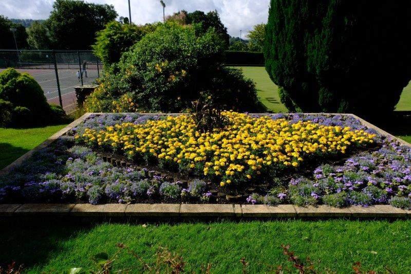Flower display in Stratford Park