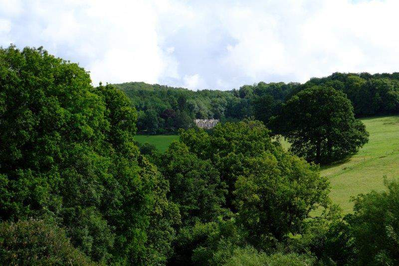 Hawkwood College nestling in the trees