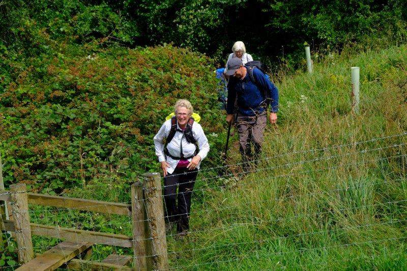 We emerge from the nature reserve
