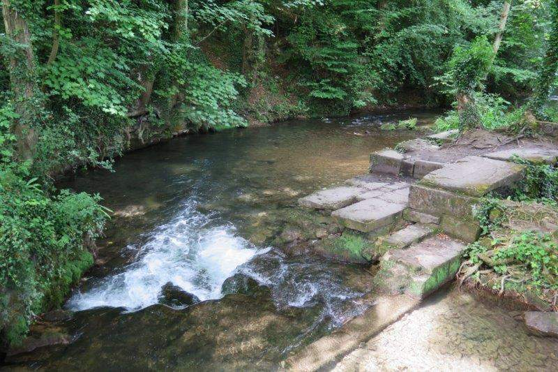 River Frome at Capel Mill