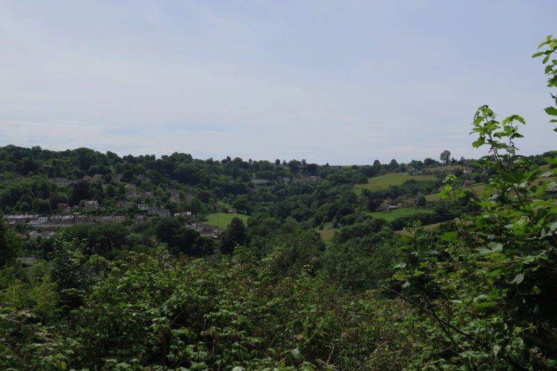View over to Swells Hill