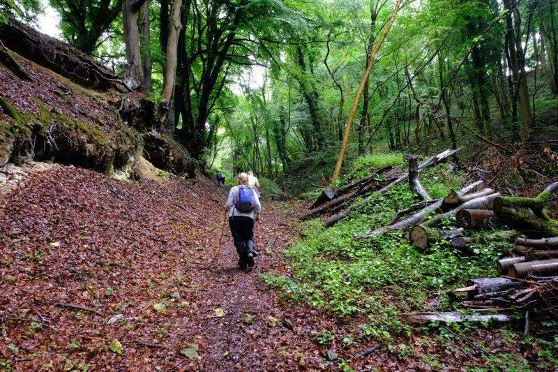 A long steep hill