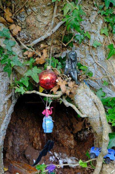 And a fairy grotto in a tree