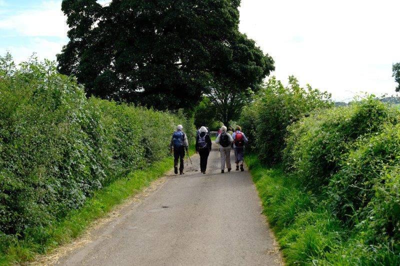 We follow a narrow lane