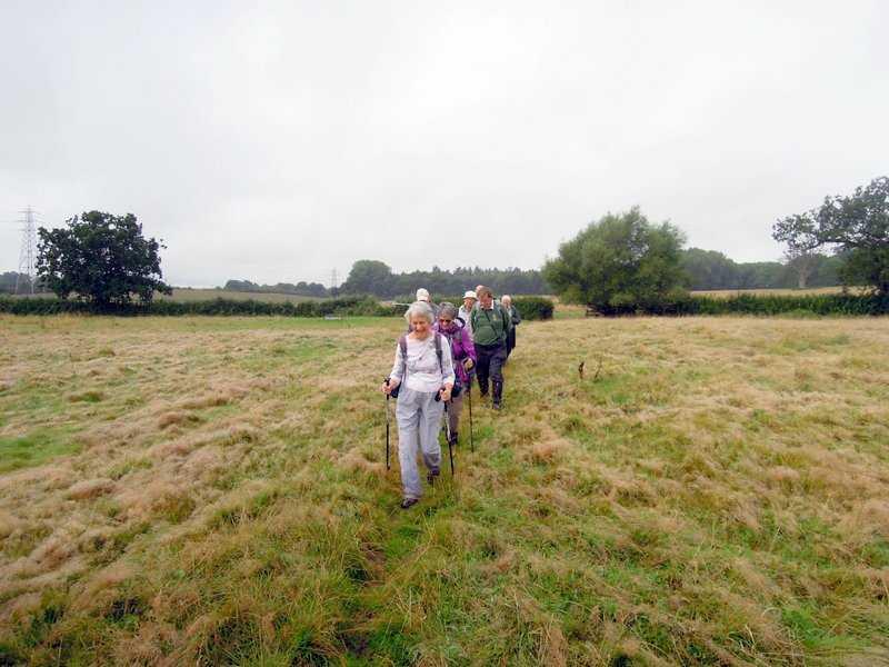 Across more meadows