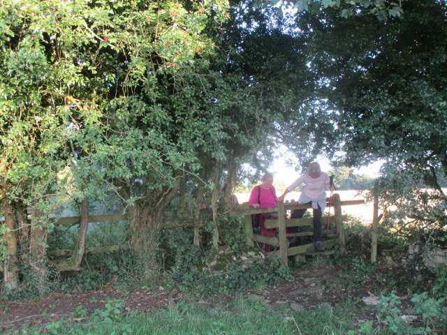 A difficult stile
