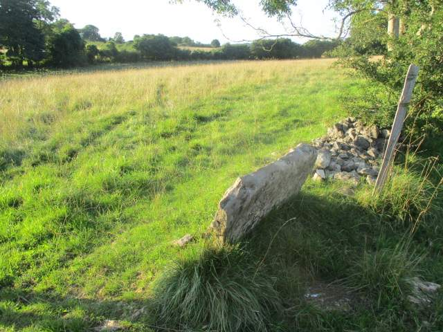 A stone stile with no wall either side