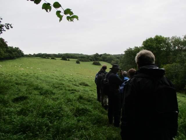 After a short hill we follow a contour path