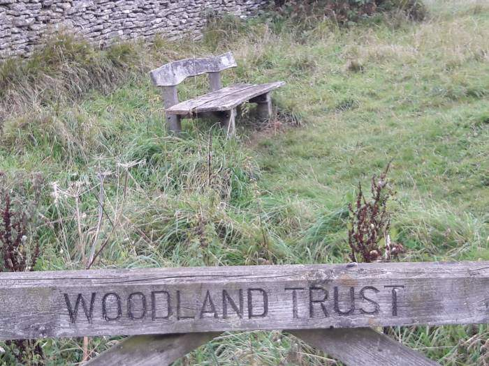 Nice seat from Woodland Trust