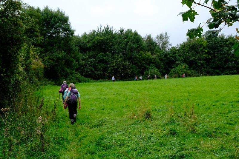 As we continue round the edge of a field