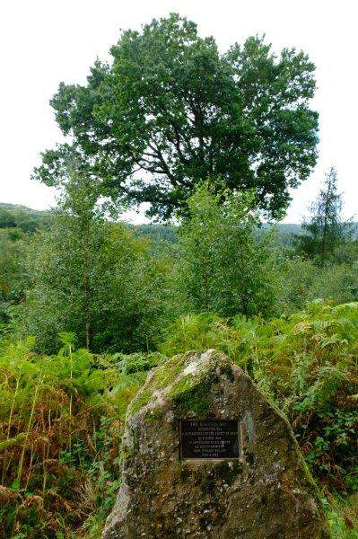 Past a stone and an oak tree commemorating the life of a deputy surveyor  in the Forest