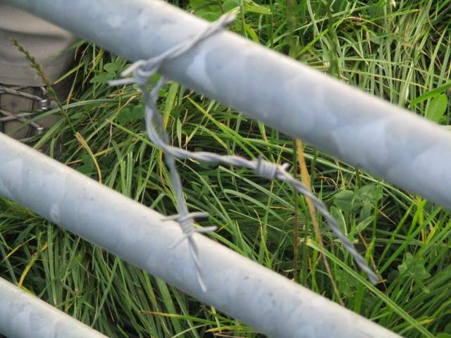 Steve and Rosemary found many gates closed with barbed wire on their walkover, but someone has taken action here.