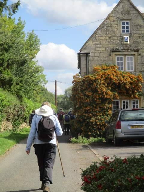Through Kemerton - a good stock of berries on this pyracantha