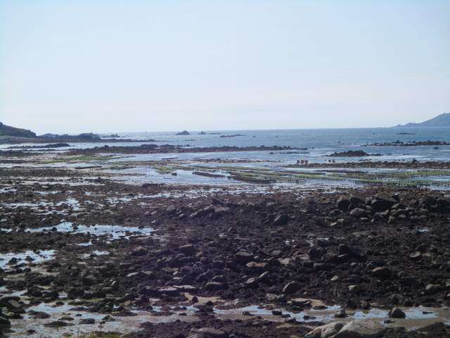 To the north it becomes rockier and we spot what we think are mussel growers harvesting their produce