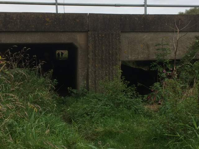 We take another tunnel under the M5 heading for Fromebridge