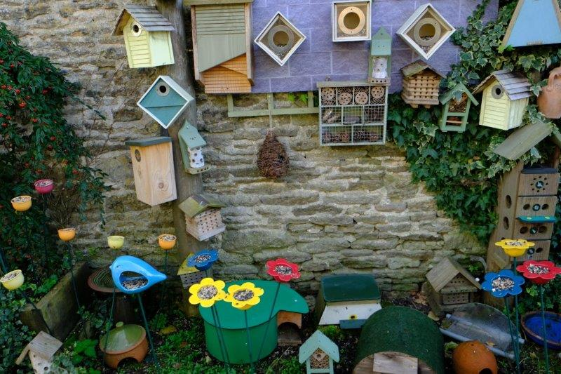 For birds and insects