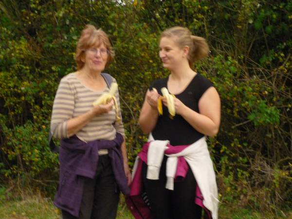 More bananas still!