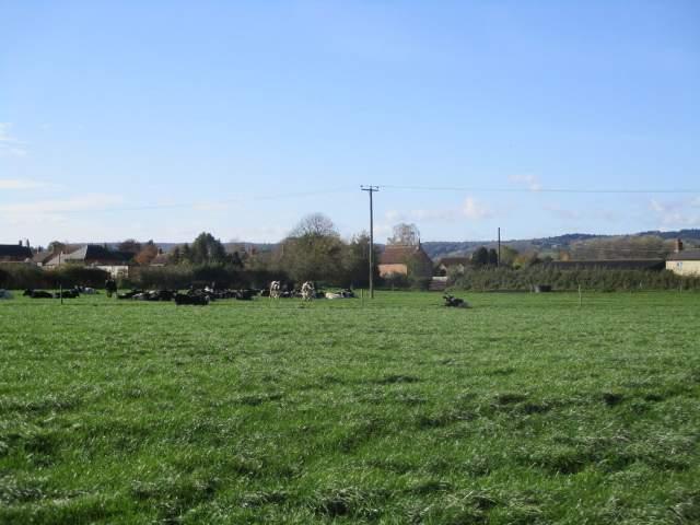 We cross fields to the village