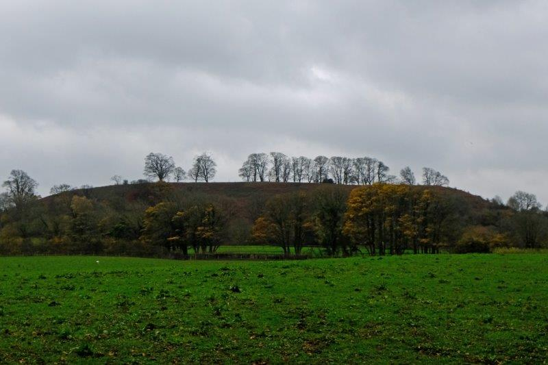 Downham Hill just across the field