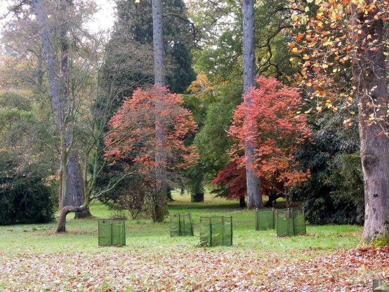 Our first glimpse of the famous Autumn colours
