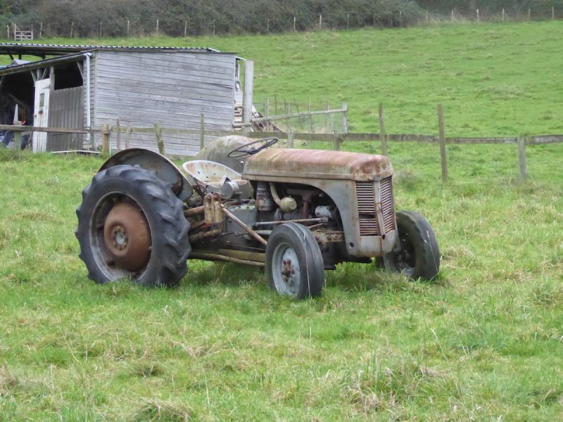 Then head up past an old Fergie Tractor