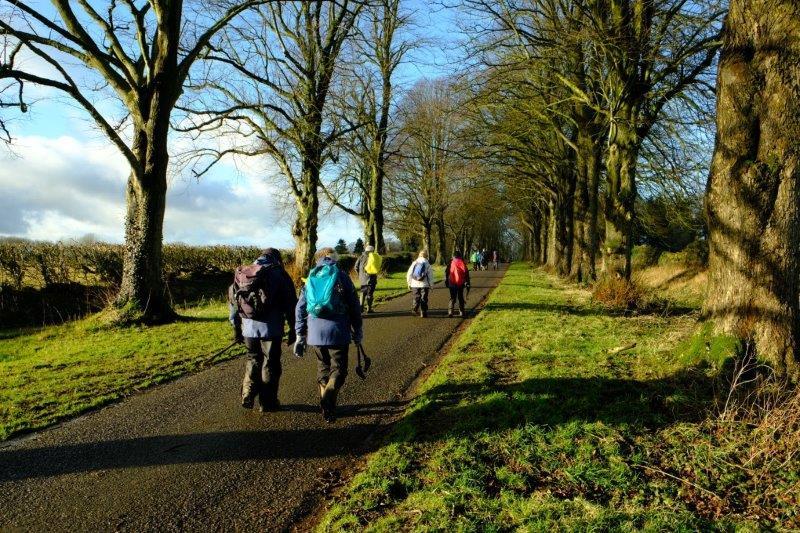 Heading back along the familiar avenue of trees