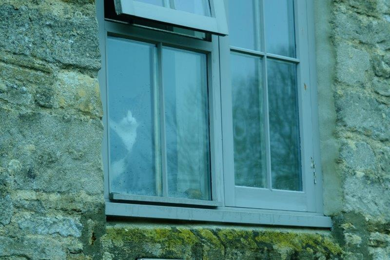 Walls have ears. windows have cat's eyes