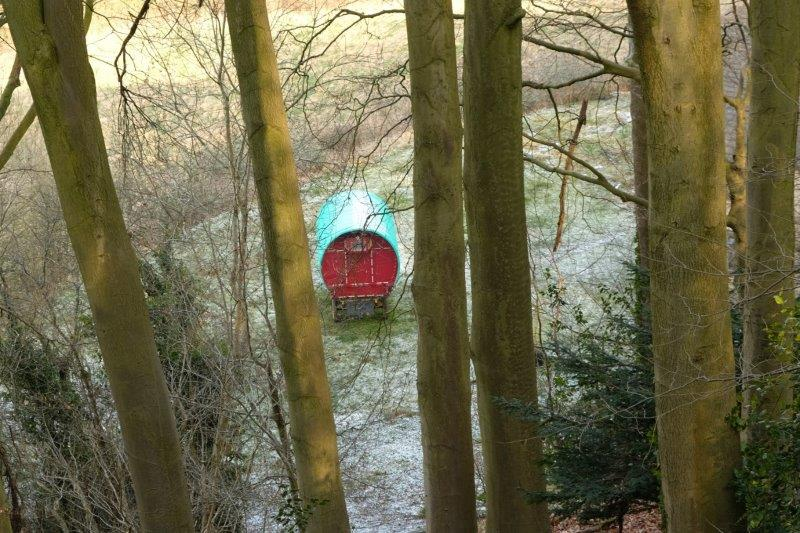 Glimpses of an old caravan between the trees