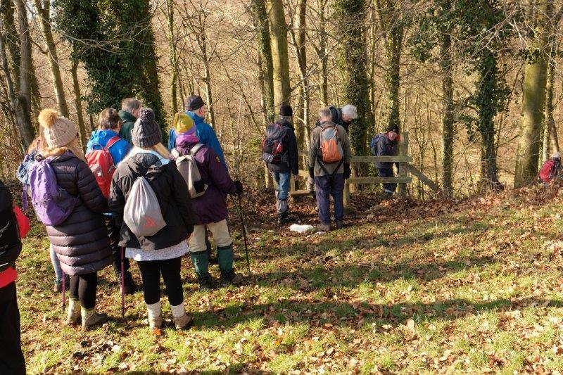 A stile takes us into woodland