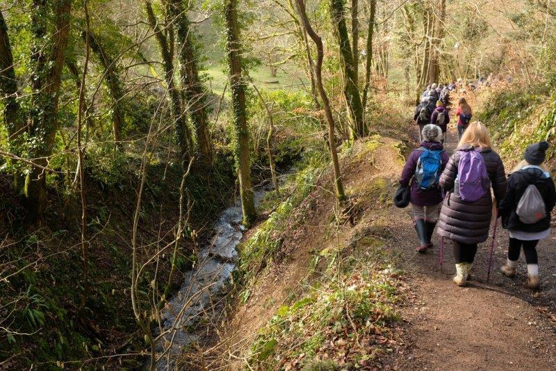 Along the Toadsmoor Stream