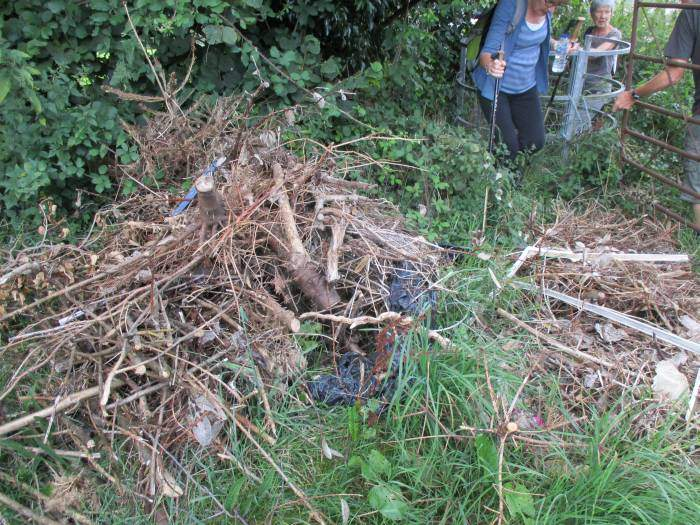 Some kind person has thrown all this on the path where we come through the kissing gate