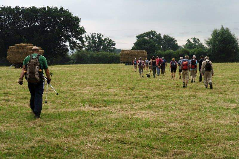 Then a recently mown hay field