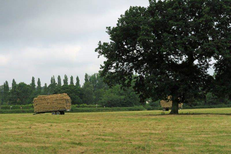 With bales of hay waiting to be taken to the farm