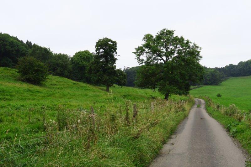 Winding between fields