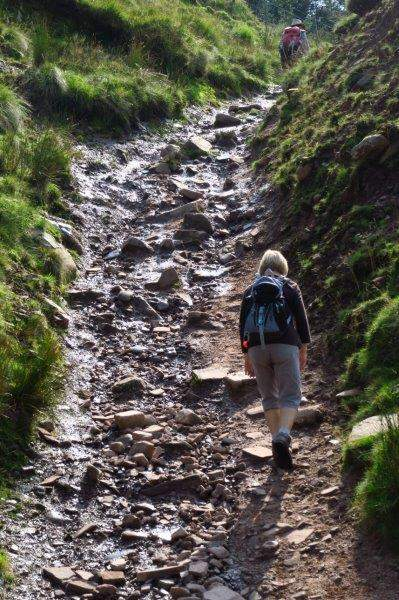 A stoney track takes us over a stream