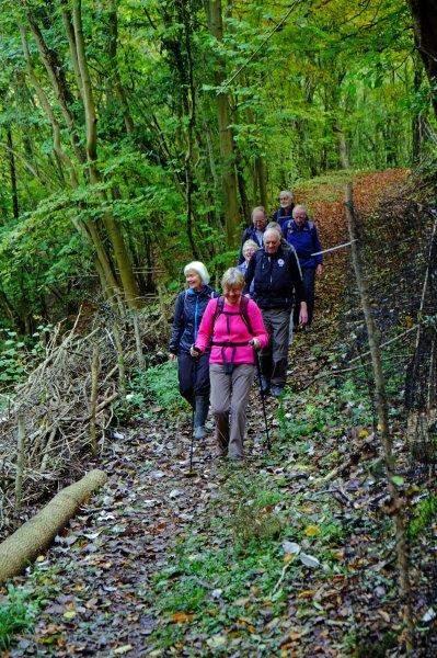 Takes us into Siccaridge Woods