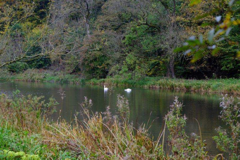 The mill pond at Bakers mill