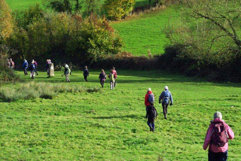 Now on the Cotswold Way