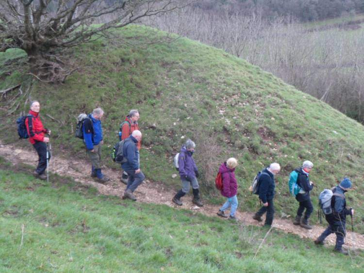 After a circuit of Uley Bury it's a steep descent