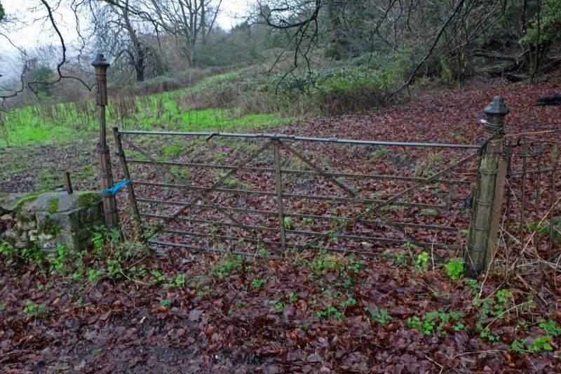 Some interesting gate posts