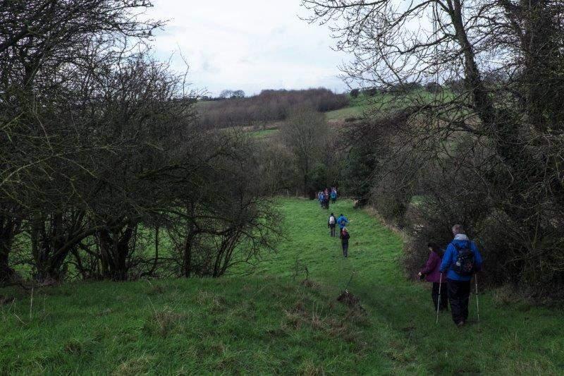 We follow a grassy track